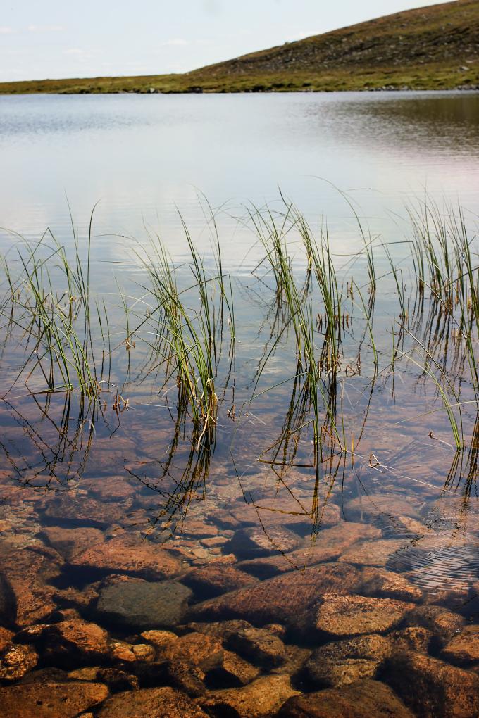 Järvi tunturin huipulla