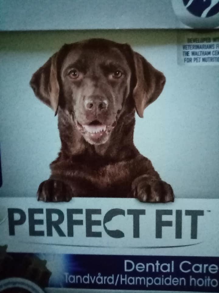 Koiralle hankintoja.