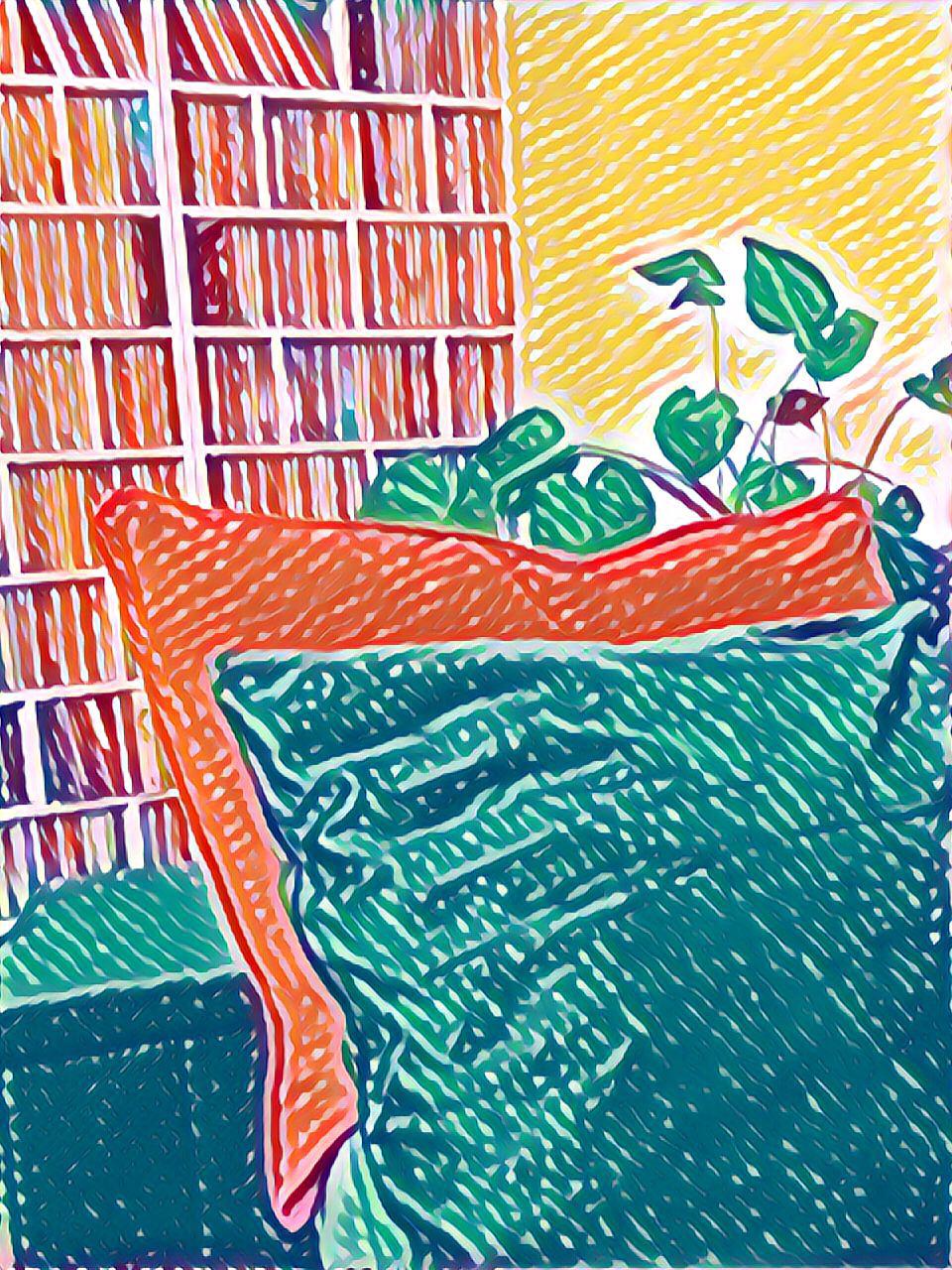 kuva sohvatyynyistä ja viherkasvista.