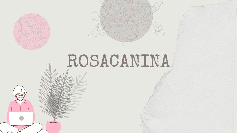 RosaCanina