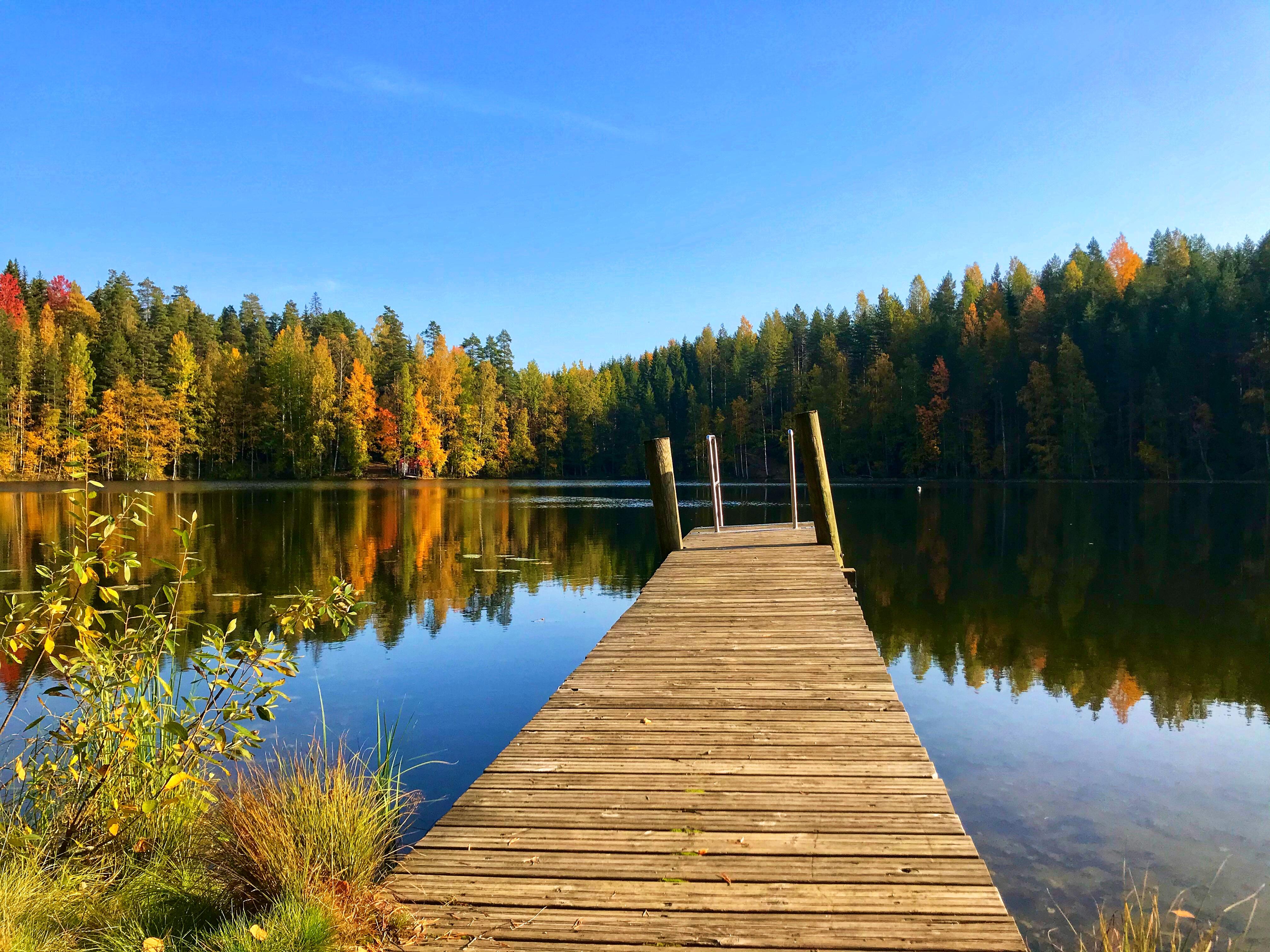 Syksyinen maisema, jossa järvi, puita ja laituri.
